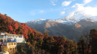 Trek to Ghandruk
