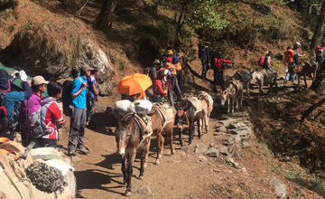 Trek Back to Lukla