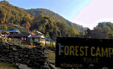DEURALI TO FOREST CAMP